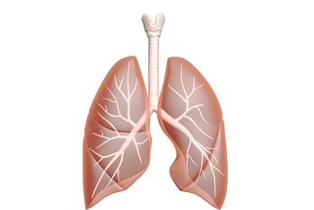 What You Must Know About Asbestos Lung Cancer